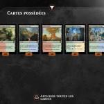 Magic duels : les terrains